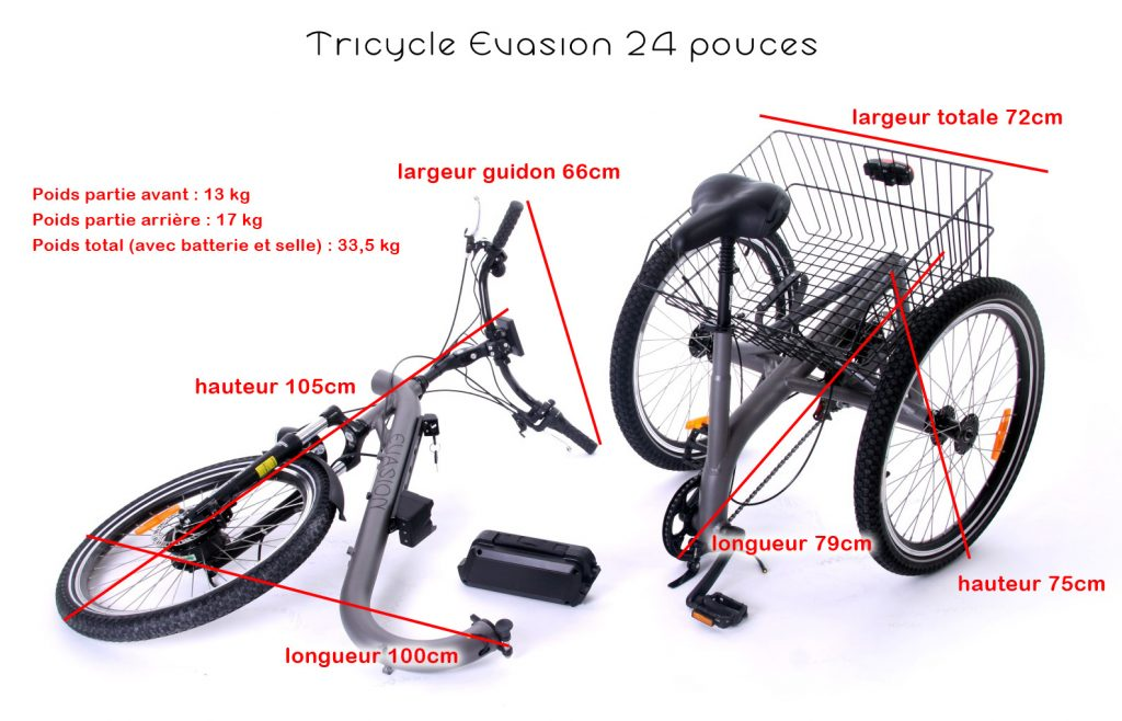 Option Transport Facile du tricycle Evasion